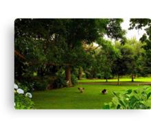 """""""Enjoying the Garden................"""" Canvas Print"""