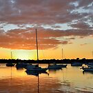 Iron Cove Sunset by Ian Berry