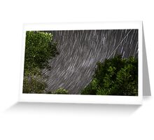 Startrails above tree Greeting Card