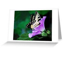 Knee-deep In Nectar... Greeting Card