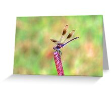 Magic in god's smallest creations Greeting Card