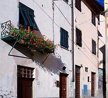 Laterina, Tuscany, Italy by newbeltane