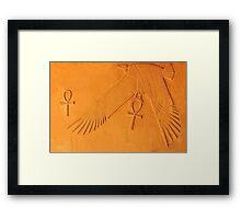 Gift of Life Framed Print