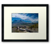Mt St Helens Fallen Tree Framed Print