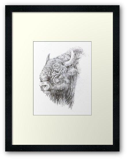 Wisent (European Bison) by A V S TURNER