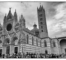Duomo di Siena in black and white by CreaRestless
