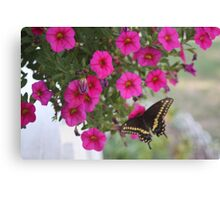 BUTTERFLY GAMES Canvas Print
