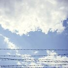Barbed Sky by Natalie Broome