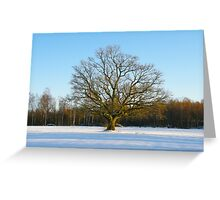 Lonely Winter Greeting Card