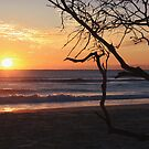 sunrise on kingscliff beach  ... by gail woodbury