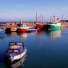 Balbriggan Harbour by Tamara Travers