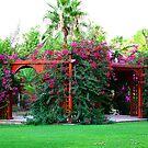 garden&flowers2 by Yannis-Tsif