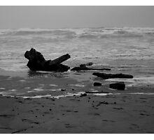 Driftwood 2 Photographic Print