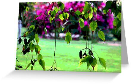 leaves  by Yannis-Tsif