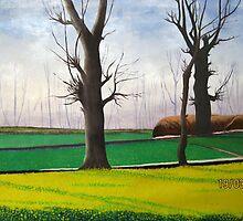 mustard field along the silk rout by artpk2009