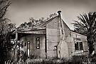 Nanson Mansion  by Pene Stevens