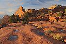 Canyonlands Sunset by William C. Gladish