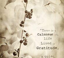 A Quiet Joy by KBritt