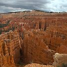 Bryce Canyon by Judson Joyce