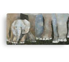 Baby Elephant 2 Canvas Print
