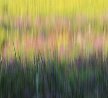 Abstract Landscape by theartguy