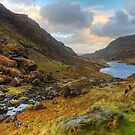 Gap Of Dunloe by Michael Walsh