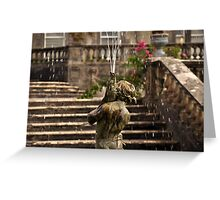 A Little water.... Greeting Card