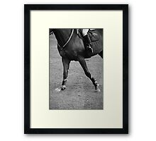 Show Jumping World Cup Framed Print