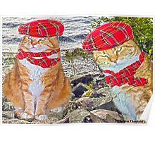 Och Aye the Meow! Poster