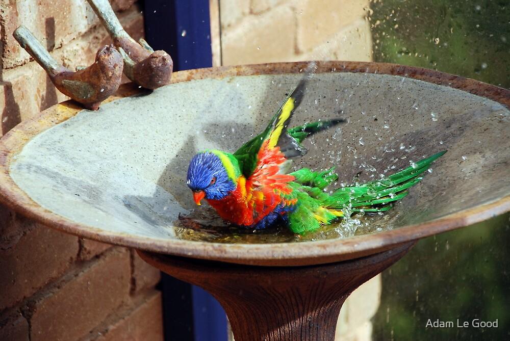 Bath Time I by Adam Le Good