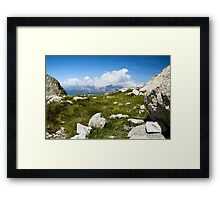 On the top Framed Print