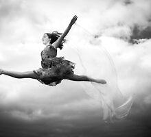 Freedom of Flight by Julie Begg