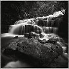 Leura Cascades III by Peter Hill