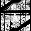 Exit by Mieke Boynton