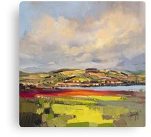 Cromarty Firth Study Canvas Print
