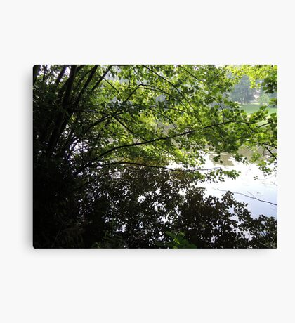 Where the leaves end and water begins... Canvas Print