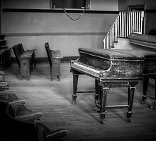 WAITING FOR THE PIANIST by Diane Peresie