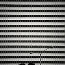 'Droid Stroll by Kevin Bergen