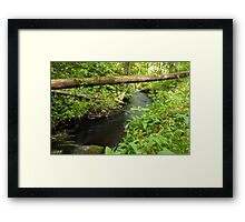 The unidentified stream in Hillerstorp III Framed Print