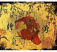 Ninja japan Photographic Print