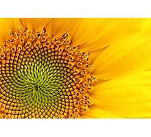 Fibonacci Sequence Photographic Print