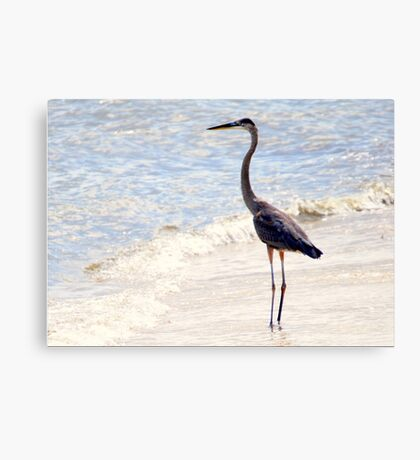 Standing Tall and Strong Canvas Print