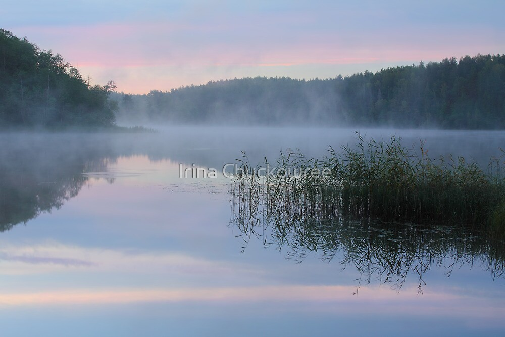 Dawn at the Lake Seliger by Irina Chuckowree