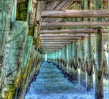 2nd Avenue Pier In Myrtle Beach by Kathy Baccari