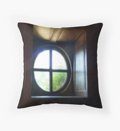 A window on History Throw Pillow
