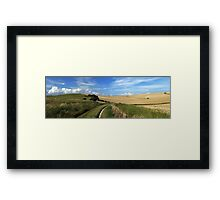 A walk from Home Framed Print