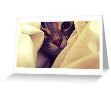 Snuggles II Greeting Card