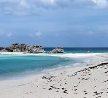 Middle Caicos. by Anne Scantlebury