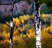 Alpine Aspens by Barbara D Richards