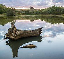 Reflected water by Joel McDonald
